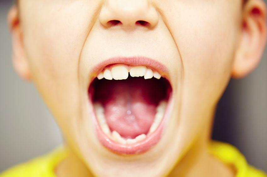 dientes niño adulto